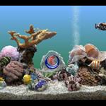 SereneScreen Marine Aquarium 3.3.6381