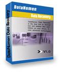 DataNumen Data Recovery 1.0